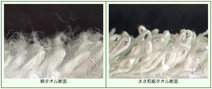 0419_sasawashi_and_cotton