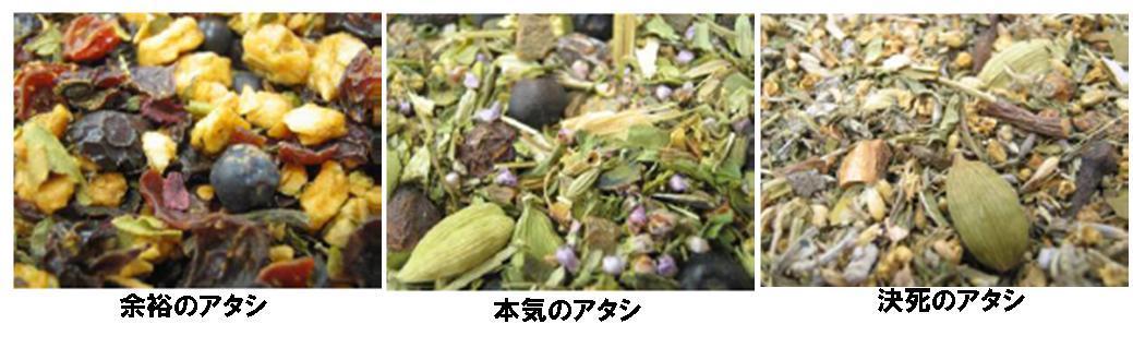0512_yoyuhonkikessi
