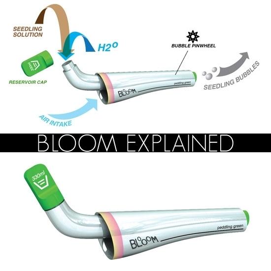 Bloomexplained6_550x550__2