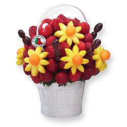 Tulipdaisy